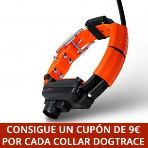 Perro nº 17
