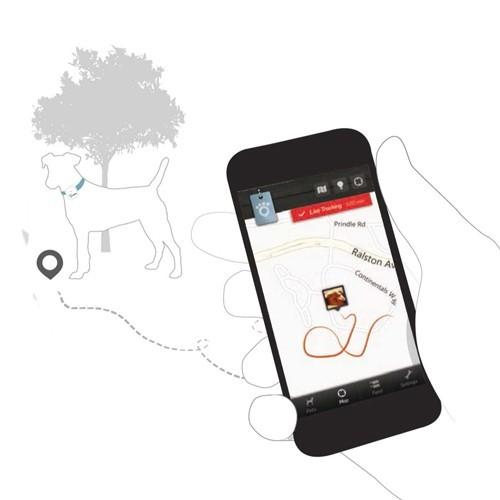 Tarjeta de memoria 4GB