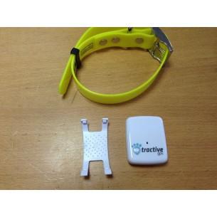 Tarjeta de memoria de 8 GB